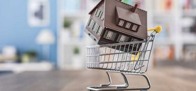 shopping cart with house in it